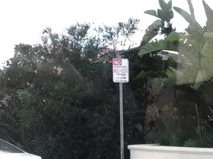 One of a bajillion No Parking signs I encountered...
